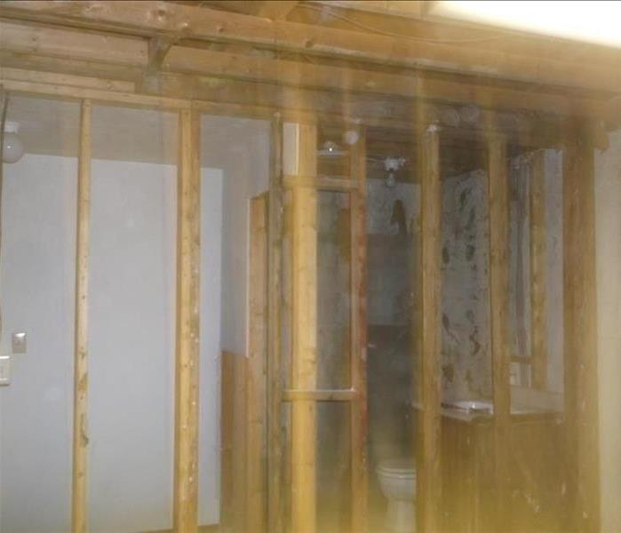How long does it take to get rid of mold? After