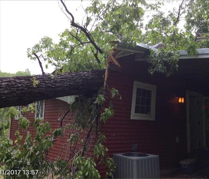 home with tree fallen on roof