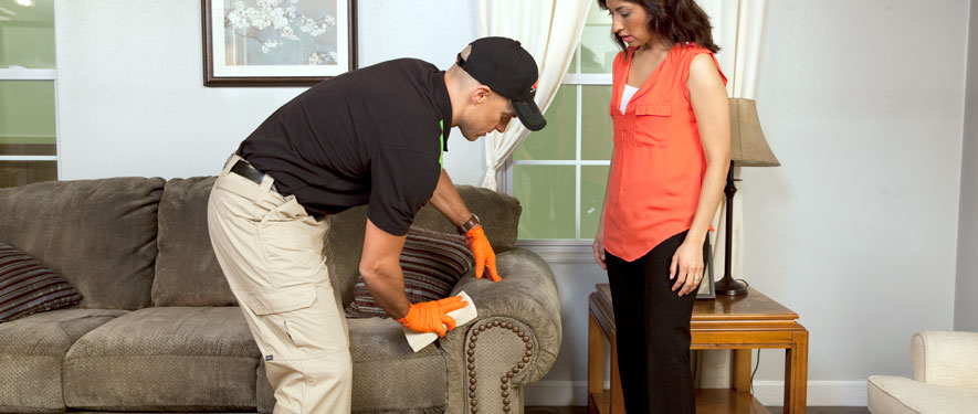 Terre Haute, IN carpet upholstery cleaning